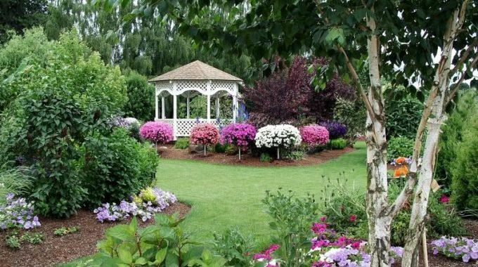 10 Zasad. Jak Wybierać Rośliny Do Ogrodu?